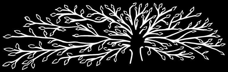 Haley-Tree-2019